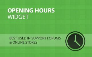 Opening Hours Widget
