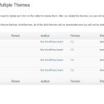 Delete Multiple Themes Settings